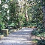 Photo de Iveagh Gardens