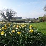 The shores of Strangford Lough