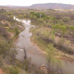 First view of the Verde River.