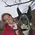 Anna loved Bucky, the llama with the serious malocclusion!