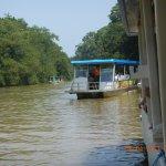 Foto de Tortuguero Canal