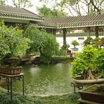 Een in the rain the Bonsai Garden is peaceful.
