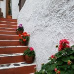 Photo de Koukos Traditional Greek Restaurant
