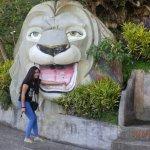 The Lion's Head of Cebu