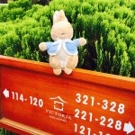 Foto de Victoria Sapa Resort and Spa