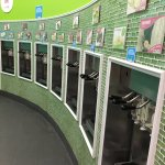 Sweet Frog - lots of flavors!