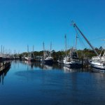 Bayou Produce and Seafood Market