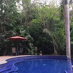 Private Pool in the Jungle