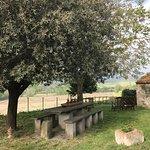 Zdjęcie Agriturismo Cioccoleta