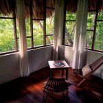 Sitting area among inside the One Bedroom Treehouse. View of the treetops.