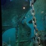 Photo of Grand Aquarium