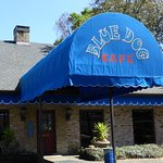 Photo of Blue Dog Cafe