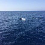 Foto de Spirit Of The Sea