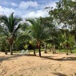 Foto de Popa Paradise Beach Resort