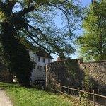 Photo of Hallwyl Castle