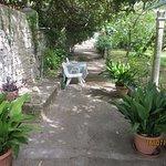 Villa Gric - garden