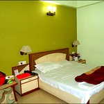 Hotel Vishal (Double Bed A/C Room)