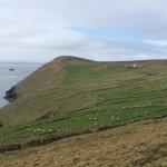 Photo of Dursey Island
