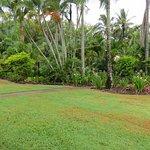 View from Beachfront Villa patio