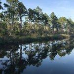 Big Lagoon State Park – fénykép
