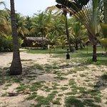 Photo of Playa Koralia
