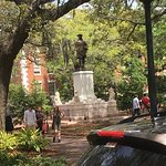 Old Savannah Tours Foto