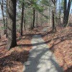 Walkway in Duck Lake State Park #2