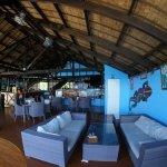Gecko bar lounge