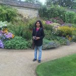 Blooms of the Blooms of Botanic Garden along the boundary wall, Oxford in September 2015