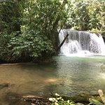 Photo of YS Falls