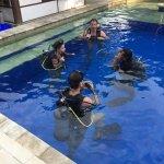 Photo of Manta Dive