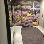 Near the lifts - lots of lavendar decorations in the room floors