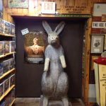 6 ft Rabbit