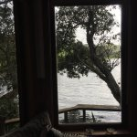 Magic Cottage - Window seat