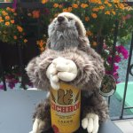 sloth on the beers again