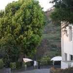 Kodai - By The Valley, A Sterling Holidays Resort Foto