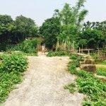Photo of Tam Coc Garden