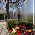 Miller House and Garden in Bloom