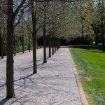 Beautiful Kiley Landscaping