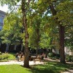 Un moment de paix à l'ombre des arbres du Palais Saint-Pierre