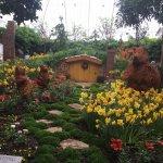 Bilde fra Phipps Conservatory