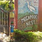 Foto di Hotel Megapode Nest