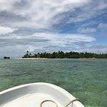 Jean-Michel Cousteau Resort Foto