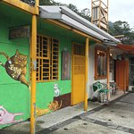 Photo of Cat Village Houtong