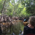 Foto de Everglades Area Tours