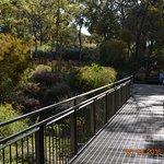 Federation walkway