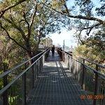 More views of walkway