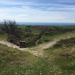 Stunning national trust area around Hardy's Monument with fantastic views of the Chesil beach an