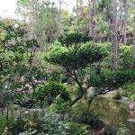 Part of the Do-bashi garden area