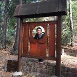 Foto di Tenaya Lodge at Yosemite